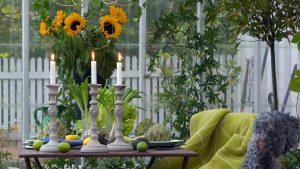 Inredning i växthus